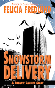 Snowstorm Delivery